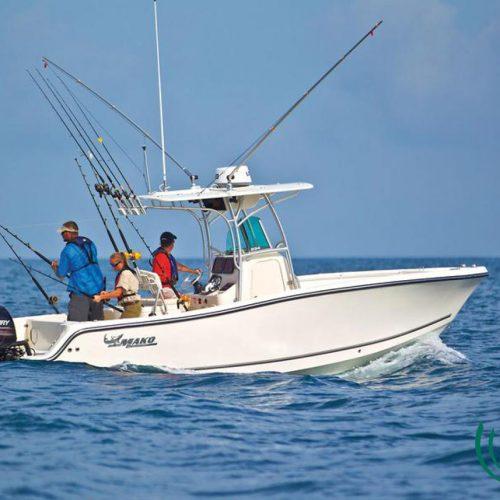 vih-fishing-adventures